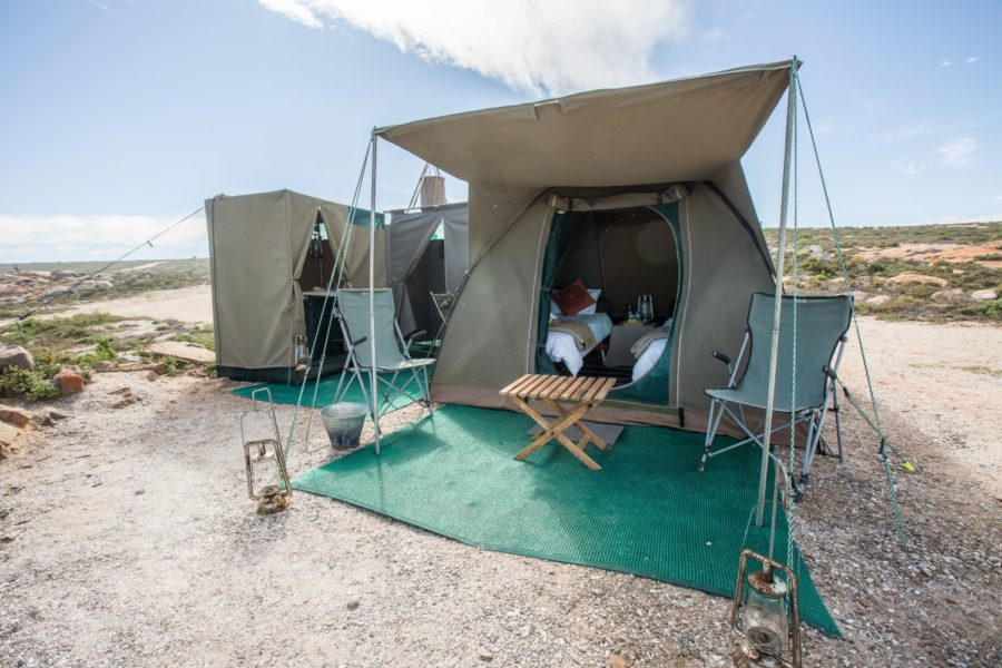 Namaqua National Park – Flower Camps